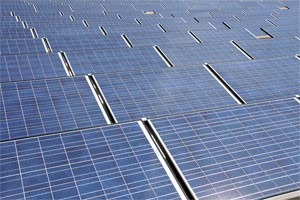 Multi-Directional Solar Cells Can Harvest Sunlight from Various Angles