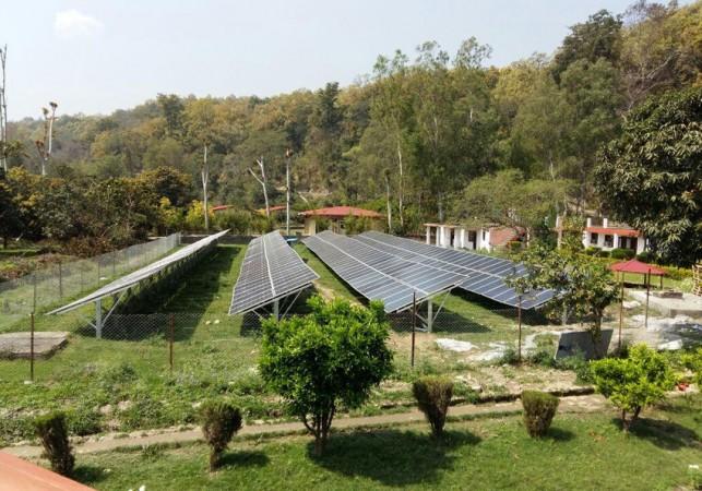 Solar Plants for People Eye