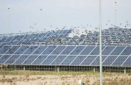 Welspun Renewables' extends Solar Capacity in Punjab