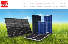 BORG Energy starts selling its Solar Photo Voltaic Panels in the Indian market