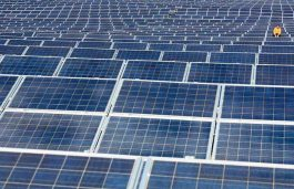 Firms not doing well will not impact India's solar programmes: Piyush Goyal