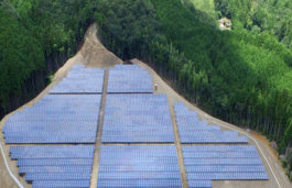 ReNew Power & Hareon Solar JV Commissions 72 MW Project in Andhra Pradesh