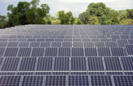 Tata Power's Renewable Arm Gets LOA for 100MW Solar Project in Gujarat