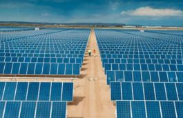 Tekno Ray Solar commissions 18.5-MW PV power facility in Konya, Turkey