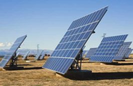 PLG Clean Energy bags 230 MW solar power plant licenses