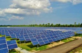 RECOM partners with WEDIS Group for 10MW photovoltaic plant in Fuerstenwalde, Germany
