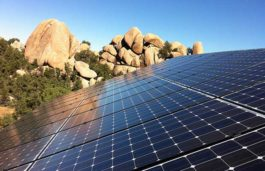 Phoenix Solar secures EPC to develop a 19.6MW solar plant in Texas