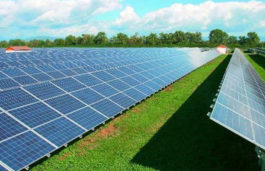 India, US solar case: WTO Appellate Body to Deliver Verdict by September