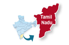Tamil Nadu ranks number 1 for commissioned capacity in both wind and solar: Bridge To India