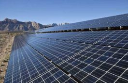 Firestone Solar to install 19.8 MW solar power project in Buckingham County, Virginia