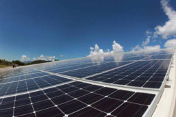 NREA drafts tender for 20 MW solar project in Hurghada