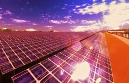 Lightsource secures 50 MW solar project out of 450MW tendered in Maharashtra