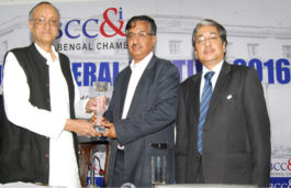 Vikram Solar CEO bags Bengal Entrepreneurship Award 2016