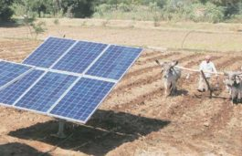 Pench buffer zone gets a solar mini grid