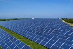 Adani confirms plan to begin construction on the large-scale solar plant in Australia next year