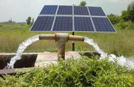 Solar pumps saving animals at Bandipur National Park: Report