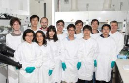 Perovskite photovoltaic cells hit new world efficiency record