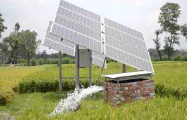 Rural Development Minister Kimidi Mrunalini asks farmers to use solar pumps
