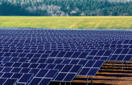 Asia Pacific will assume global leadership for clean energy in 2017: Frost & Sullivan