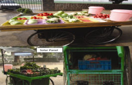 Scientists develop and designs solar-powered vending cart for storage of fruits and vegetables
