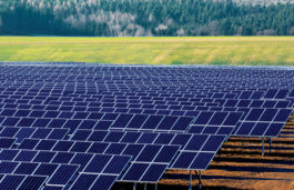 NovaSol Energy Unveils New Solar Farm in Florida