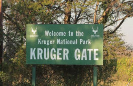Aquion Energy Delivers Sustainable Battery System to Integrate With Off-Grid Solar Power at Kruger National Park in South Africa