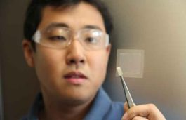 CSIRO makes high-quality graphene with soybeans