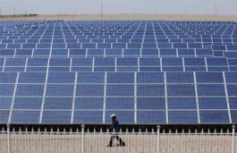 Cheap Chinese Imports Burn Domestic Solar Cell, Module Makers