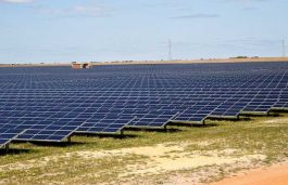 Manildra Solar Farm reaches financial close: First Solar