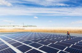 Apple to Utilize 100 Percent Renewable Energy for Manufacturing in Japan