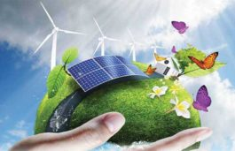 Haryana Renewable Energy Minister Appealed To The People To Adopt Clean Energy To Protect The Environment