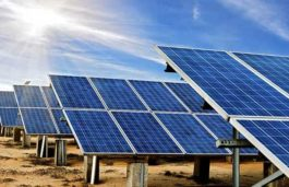 India's Solar Energy Capacity Grows by Record 5525 MW