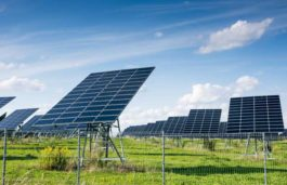 Iberdrola Begins Construction on 100MW Solar PV project in Mexico