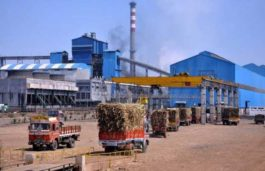 Meham Sugar Mills Tenders 20 MW Solar Power Project in Haryana