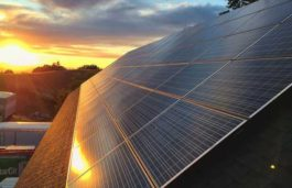 Silicon Ranch Begins Work on 20 MW PV Project to Power FB Data Centre