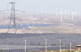 Delayed Solar Development in Japan amid Covid-19 Likely to Facilitate Coal Usage