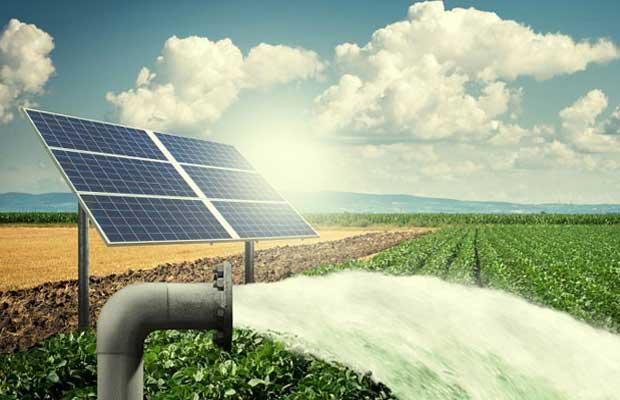 Solar Pump Irrigators