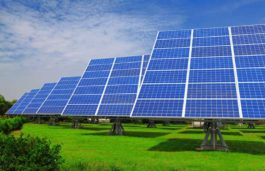 Bengaluru Ranked as Top Green City Owing to the Spike in Demand for Solar and Garden Products: Survey