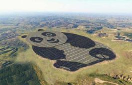 World's First Panda-Shaped Solar Energy Farm Built in China