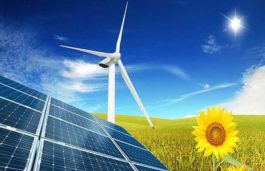 India Becomes Global Leader in Renewable Energy Auction: Report