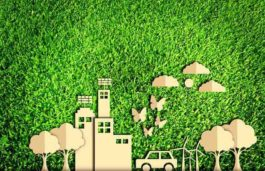 Surat Tops Among Green Energy Producers in India