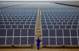 Can't Stop, Won't Stop: China's Photovoltaic Cell Production to Exceed 60GW