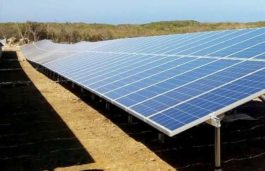 GCL-SI Inks Cooperation Agreement with IBC SOLAR