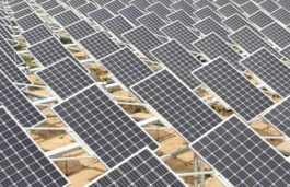 EDF-Jinko Consortium Awarded World's Largest Solar Project in Abu Dhabi
