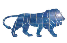 Indian Solar Power Market Witnesses Change in Demand-Supply Landscape