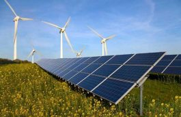 Low Bids Slowing Solar Energy Projects: ICRA