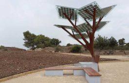 RAU University in Bihar Develops Solar Tree for Irrigation Purpose