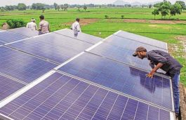 Tumbling Solar Prices Starts Claiming Victims as Trina Reconsiders India