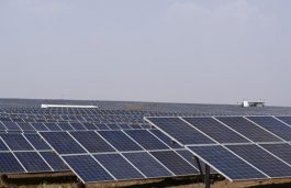 After a Lull 2017, India's Solar Power Sector is Rising Again