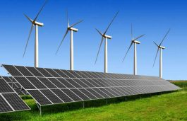 Clean Energy Can Become India's Sustainability Model For World: Sweden